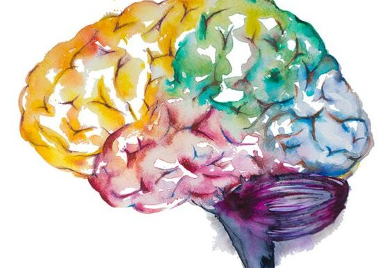 Taller de Neuroeducación y Disciplina Positiva